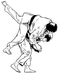 Judo in MMA