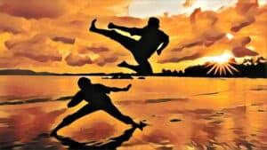 Martial Arts Principles